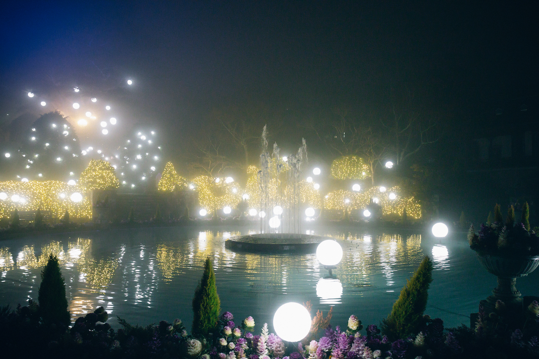 『箱根強羅公園 スプリングナイトガーデン 2020 〜Happy Spring Birthday!!!〜』