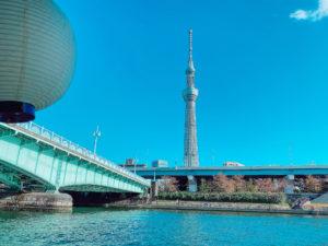 東京スカイツリー(2020年11月)/撮影:(C) ACTRESS編集部